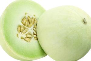 Dưa lê trồn trong nhà màng cho năng xuất cao, trái đẹp