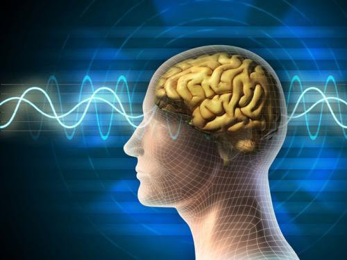 Cải thiện trí nhớ nhanh chóng từ dược liệu tại
