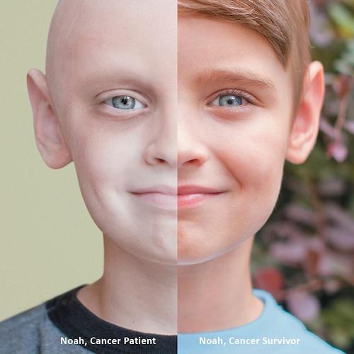 Công dụng của hạt bơ: Chống ung thư