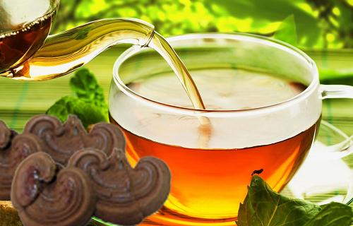 Dùng linh chi dưới dạng trà