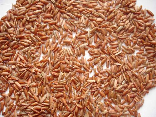 công dụng của gạo lứt