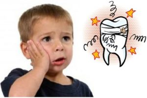Cây lá lốt chữa đau răng – không phải lúc nào cũng hiệu quả