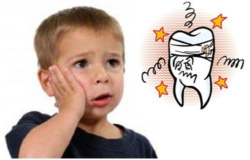 Cây lá lốt chữa đau răng