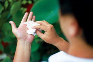 Cây lá lốt sẽ là phương thức giúp bạn điều trị bệnh ra mồ hôi nhanh chóng, tiết kiệm nhất