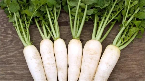 Công dụng của củ cải trắng