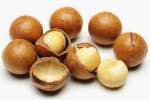 Có 7 loại hạt macca nhưng chỉ có 2 loại ăn được và được trồng
