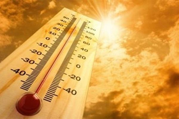 Những món ăn bài thuốc giúp trị bệnh mùa nắng nóng