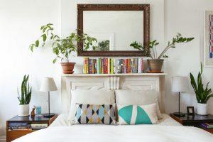 Cây trong phòng ngủ – Phần 1: Nên trồng hay không và trồng như thế nào?