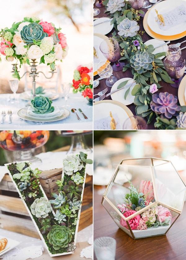 Đám cưới tràn ngập sen đá là ý tưởng tuyệt vời cho các cặp đôi