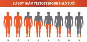 Mất cân bằng nội tiết làm suy giảm testosterone gây nguy cơ rụng tóc