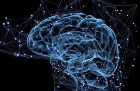 4 thói quen sẽ hại đến não của bạn